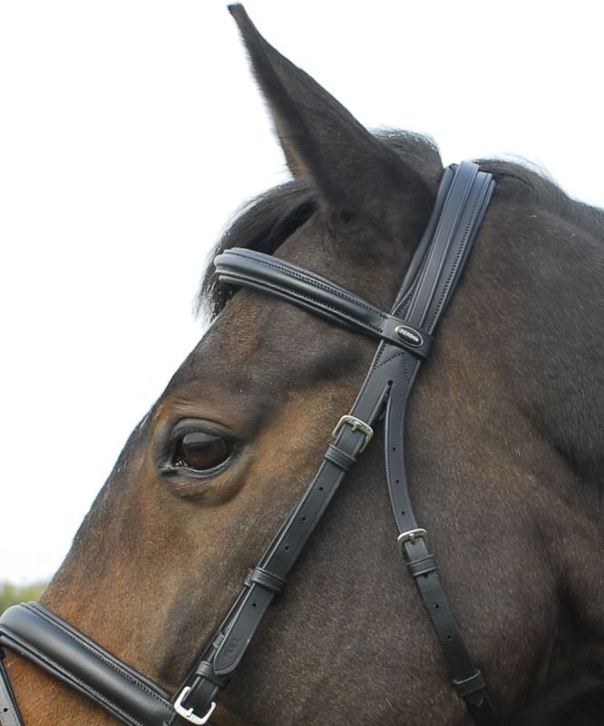 Heritage English Leather 'Comfort' Bridle with Flash Noseband