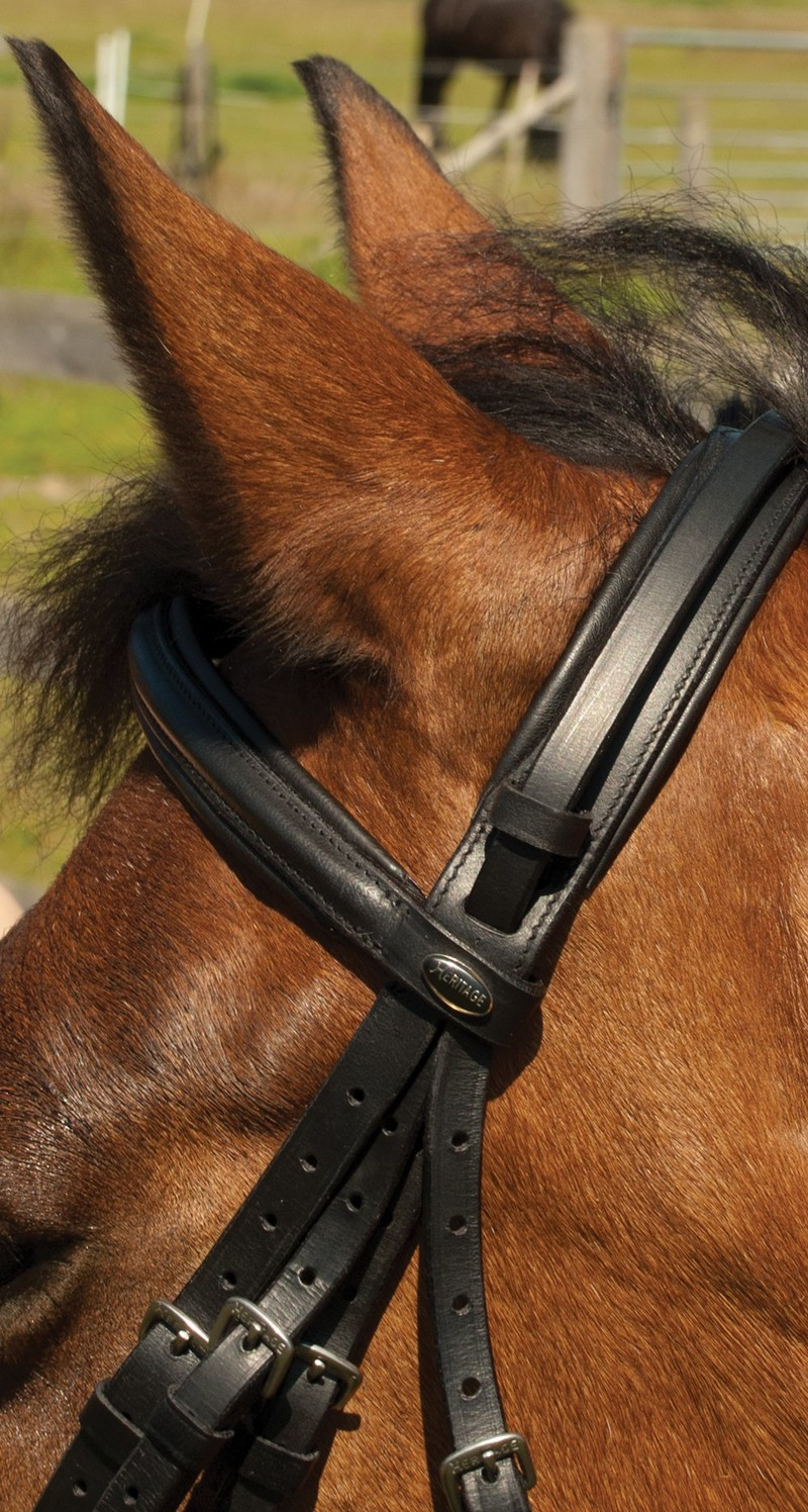 Heritage English Leather Double Comfort Bridle