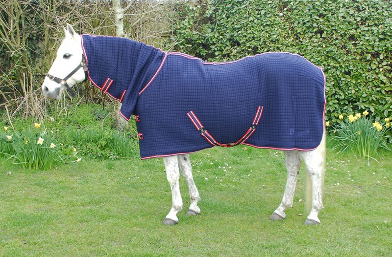Rhinegold Full Neck Celltex Rug
