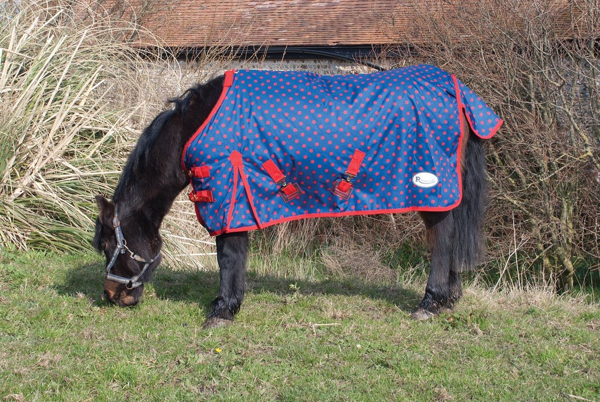 Rhinegold 'Dottie Torrent' Outdoor Rug For Foals/Tiny Ponies 3'6 - 4'3