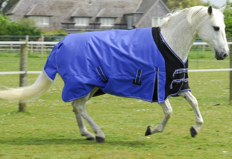 Rhinegold Elite Storm Rug With Waterproof Stretch Chest Panel-NECK COVER INCLUDED