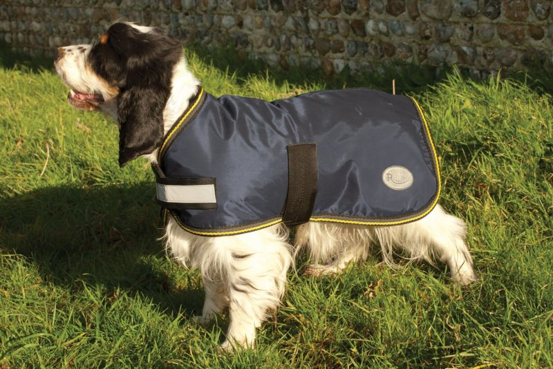 Clearance Rhinegold Waterproof Dog Coat