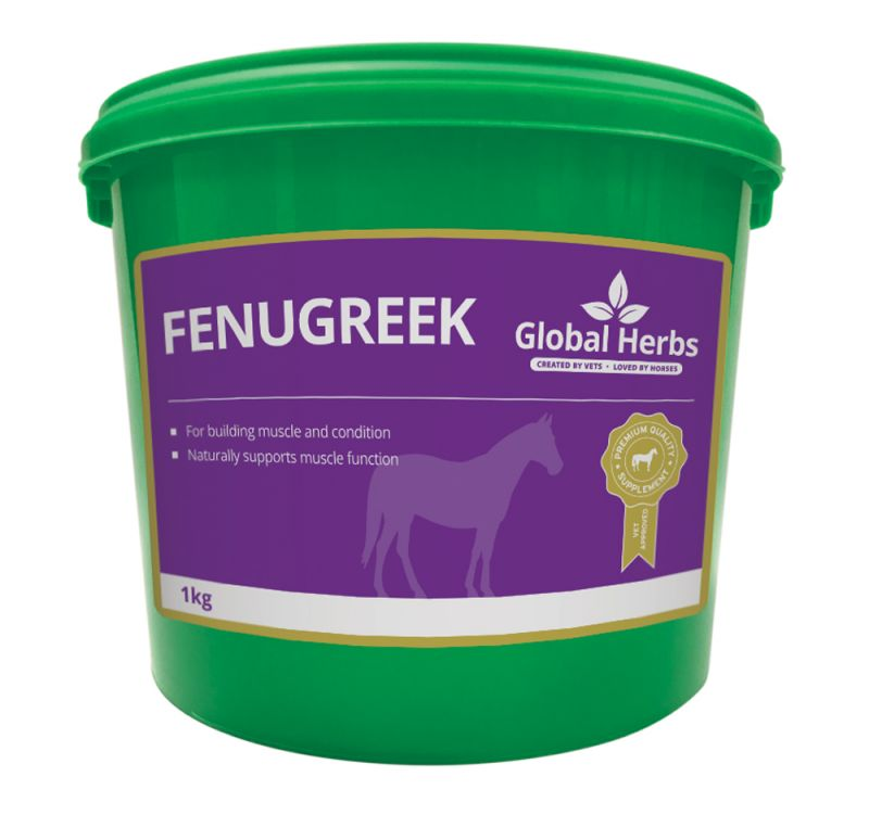 Global Herbs Fenugreek Seeds-1kg Tub