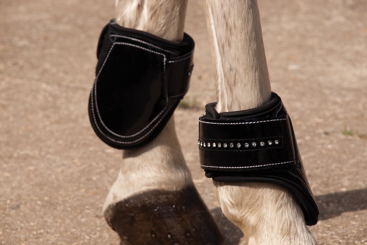 Rhinegold Patent Tendon & Fetlock Boot Set With 'Crystals'