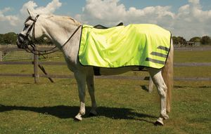 Rhinegold Waterproof 3/4 Ride-On Rug