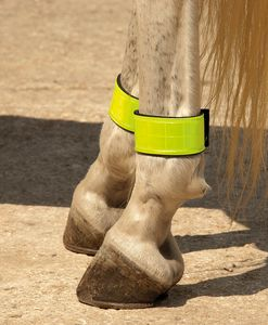 Harlequin Neoprene Lined Reflective Leg Bands