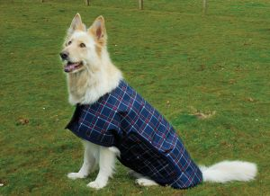 Rhinegold Alaska Waterproof Large Breed Dog Coat