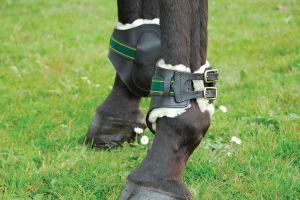Rhinegold German Leather Fetlock Boots
