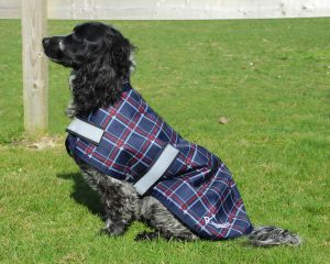Rhinegold Waterproof Dog Coats